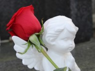 [크기변환]stop-child-suicide-2301552_1280.jpg