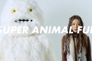 이색 동물 보호 캠페인 '슈퍼 애니멀 퍼' 주목